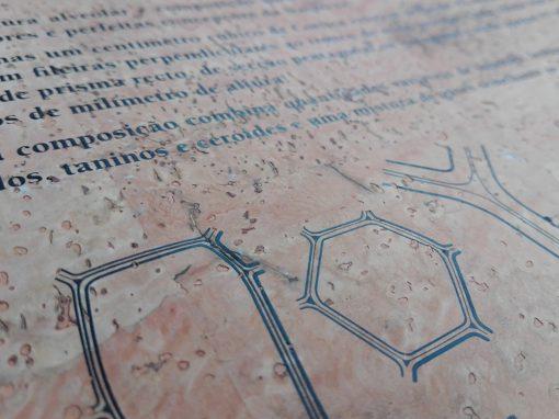 Serigrafia em diferentes materiais